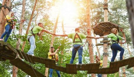 Gruppe beim gemeinsam Klettern im Kletterwald als Teambuilding Event